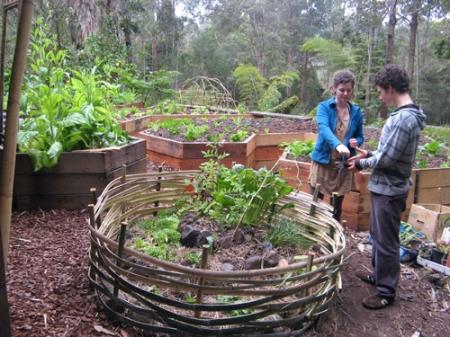 Garden-basket